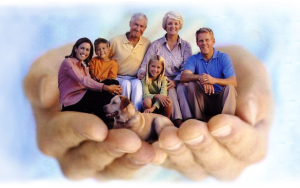 Что такое полис страхования жизни и здоровья